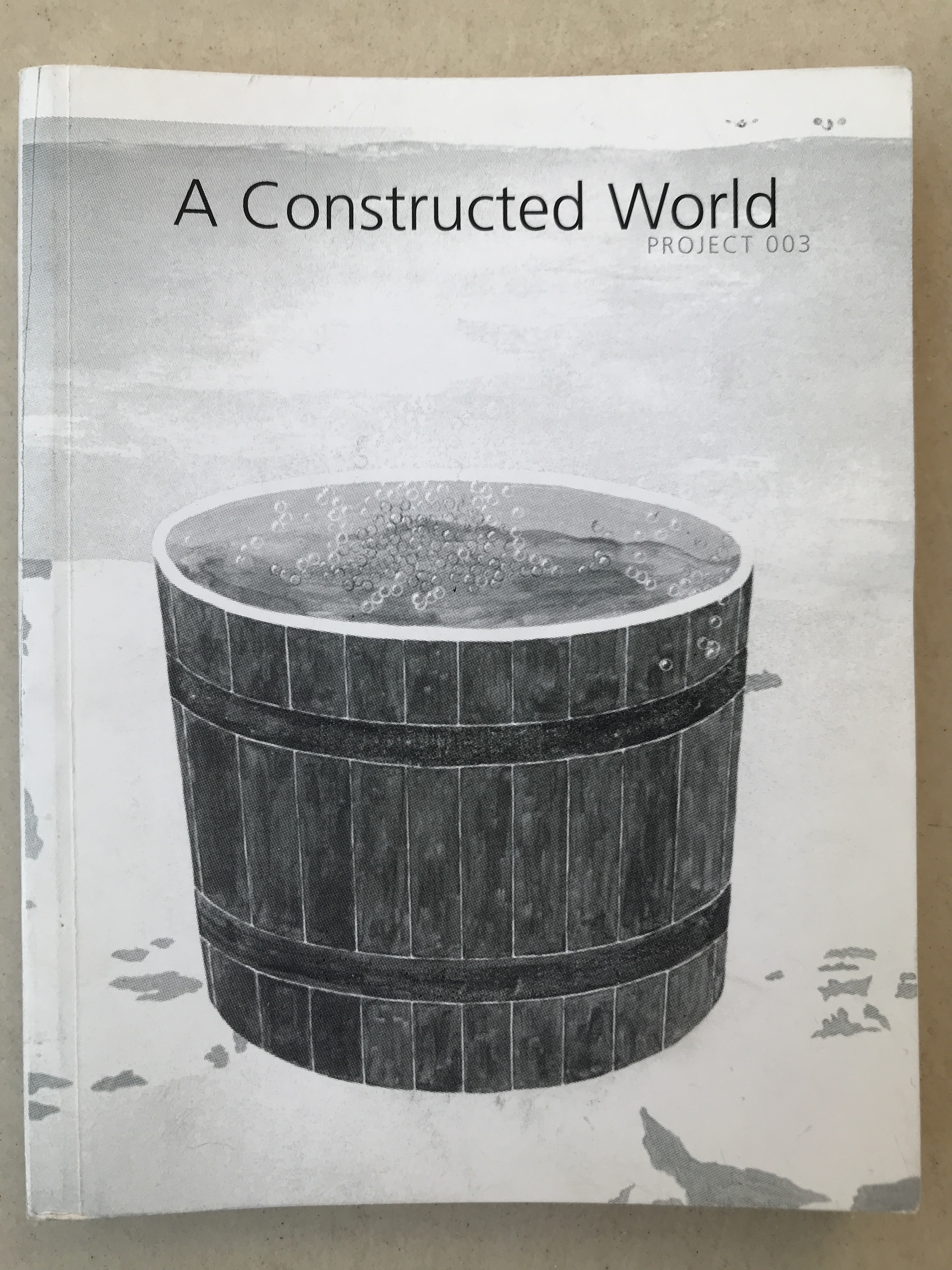 A Constructed World